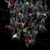 NET.building как наиболее актуальное направление public relations
